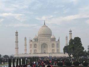 Taj Mahal in morning fog